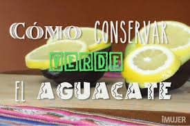 conservar aguacate